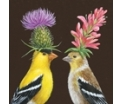 Goldfinch Couple - Servetten - 20st. bedrukt, 33X33cm, 3lagen, 100%Tissue, Chloorvrij