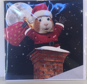 Kerstkaart - Santa Mouse in Chimney - Text inside: Merry Christmas and a Happy New Year