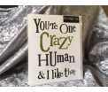 "The Birght Side - You""re Crazy Human & I like that - 17x14cm - Inclusief enveloppe"