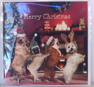 Kerstkaart - Christmas Dogs - Text inside: Merry Christmas and a Happy New Year